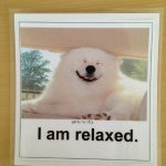 I am relaxed